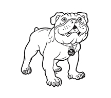 Bulldog Mascot Logo - Light